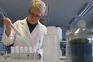 Hana Šantrůčková zkoumá přeměny organické hmoty v půdě. Díky své práci se podívala po celém světě, odebírala vzorky na Sibiři nebo v tropických mokřadech Belize.