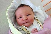 Lenka Pírková přivedla na svět dceru Emmu Pírkovou. Narodila se 18. 7. 2017 v 8.48 h. Váha novorozence byla 3,8 kilogramu. Domovem Emmy budou Vodňany.
