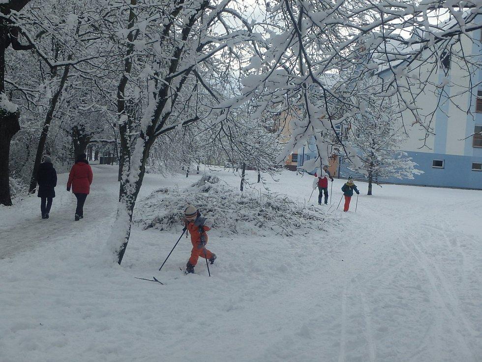 Běžkaři se v těchto dnech vydávají na projížďku po loukách a polích za Českými Budějovicemi podél Malše.