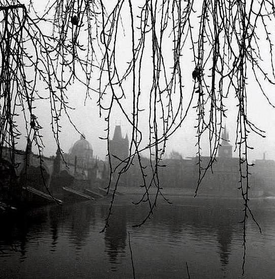 Snímky zcyklů českobudějovického fotografa Jana Lukase vystavené vGalerii Měsíc ve dne. Záběr zpražské Kampy