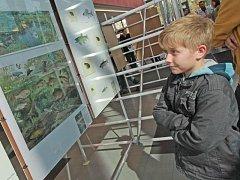 Výstava Ilustrátoři přírody na Jihočeské univerzitě.