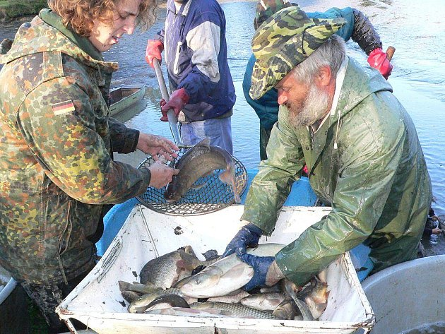Podzimní výlovy zahájili i sportovní rybáři. Například na rybníku Žďár u Kaplice.