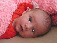 Dne 3.2.2012 se v českobudějovické porodnici narodila  Terezka Homolková. Rodiče Pavla Šimánková a Martin Homolka jsou na svou dcerku moc pyšní.