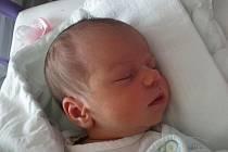 Anna Zdeňka Faltýnová, narozena 11.7.2011 40 minut po 3. hodině ranní, má doma hned dva starší ochránce – dvanáctiletého Iva a tříapůlletého Dominika. Holčička vážila 2,90 kg a domovem jí budou České Budějovice.