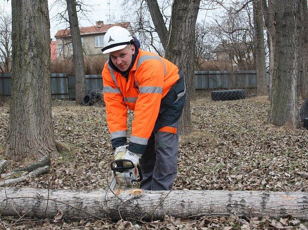 Zvuk motorových pil se od ozývá z českobudějovického výstaviště. Začala tu velká obnova zeleně. Kácí se přestárlé a nebezpečné stromy. Na snímku Ladislav Pokorný.