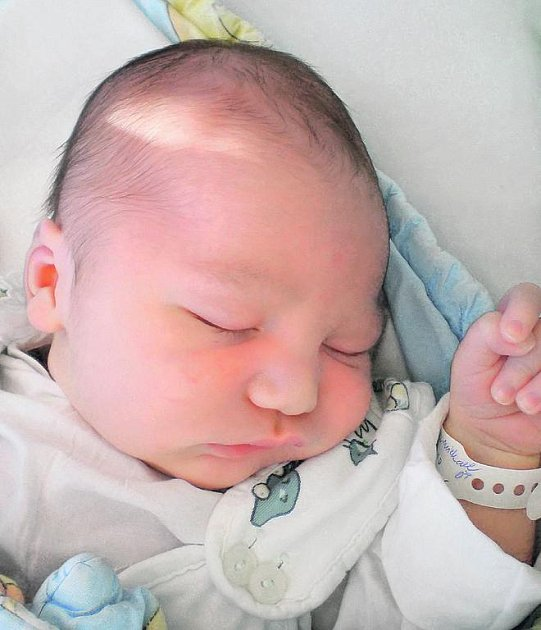 Alex Michael Žižka je dalším novým občánkem města České Budějovice, kde bude i vyrůstat. Narodil se 24.10.2010 v 16.40 hodin. Porodní váha miminka byla 4,41 kg.
