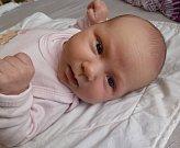Svou prvorozenou dceru přivítali 14. 3. 2019 Nikol a Václav Peltanovi. Na svět Zoe Peltanová přišla v 17.58 h., vážila 3,19 kg. Žít bude v krajském městě.