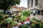 Trhy na Piaristickém náměstí.
