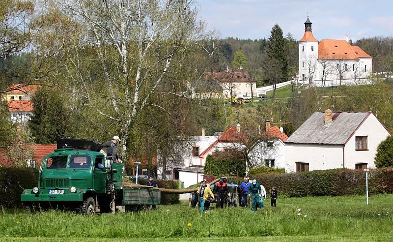 Letošní smrk, který Doudlebští použijí na stavění máje měří 28 metrů.
