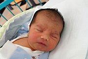 V Českých Budějovicích budou rodiče Barbora Ikriová a Tomáš Bavúr vychovávat novorozeného syna Dominika Bavúra. Na svět přišel 17. 7. 2017 v 10.41 h. Vážil 3,86 kilogramu.