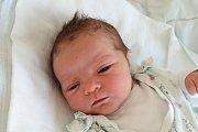 Šárka a Petr Bittnerovi jsou šťastnými rodiči Petry Bittnerové. Narodila se 1. 5. 2018 v 17.27 h, vážila 2,78 kg. Doma v Římově se na ni těšili sourozenci Michal (8) a Kristýna (5).