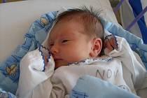 Jmenuji se Nelinka Paráčková, narodila jsem se v českobudějovické porodnici 16.4. 2011 v 11h 42 minut. Měřila jsem 48 cm, važila jsem 2,90 kg. Radost budu dělat rodičum ve Chvalšinách.