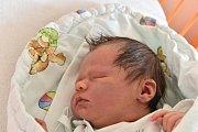 Tinu Johannu Metzgerovou čekal doma v Budějovicích dvouapůlletý bratr Phillip Willem. Rodiče Michala Holubová a Christian Metzger ji přivítali na světě 30. 5. 2016 přesně v 11 h.