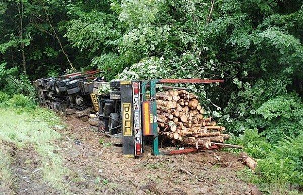 Opravdové vožení dřeva do lesa…