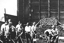 Na táborské střelnici. Němečtí vojáci uklízejí krev po zastřelených vězních.