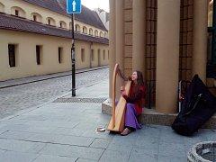 Spontánní. Takové je to podle Aleny Pekařové, místní harfistky, která ráda improvizuje, na ulici.