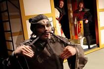 Loutkohra Jihočeského divadla nově baví hrou Divoký tygr přeskakuje strž, v níž jsou odkazy na šaolinské mnichy i Kill Billa.