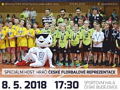 Florbalový turnaj v Českých Budějovicích