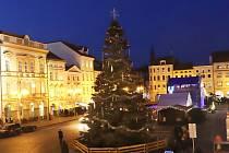 Ještě nerozsvícený vánoční strom na českobudějovickém náměstí.
