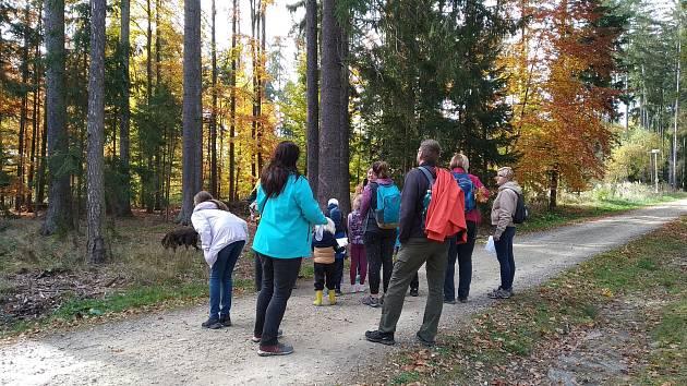 V Trocnově se v rámci Dne archeologie konaly prohlídky zkoumaných trocnovských dvorců. Pro děti byl přichystán edukační a zábavný program.
