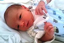 Martínek Svoboda se narodil v budějovické porodnici 9. 10. 2015, v 8.17 hodin s porodní váhou 3,63 kg. Vyrůstat bude v Adamově po boku devítiletého bráchy Davida. Pyšnými rodiči jsou Barbora Rejnková a Martin Svoboda.