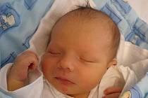 Dvacetiměsíční Jakub už netrpělivě nakukuje do postýlky malého brášky Dominika Remty. 3,61 kg vážící chlapeček přišel na svět 18.3.2011 v 8 hodin a 13 minut. Oba bráškové budou společně s rodiči bydlet v Českých Budějovicích.