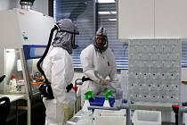 Testování biočipů v laboratořích s vysokou úrovní zabezpečení BSL-3 v Českých Budějovicích.