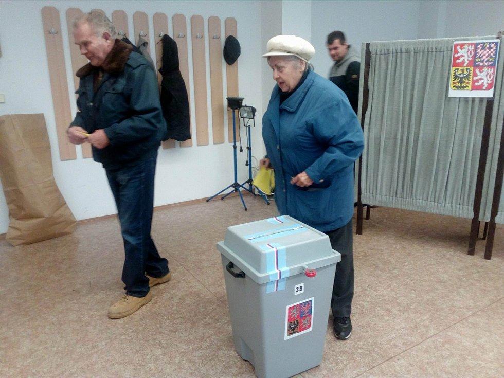 Manželé Janotovi odvolili ve volebním okrsku číslo 38 ve Zdravotně-sociální fakultě Jihočeské univerzity.