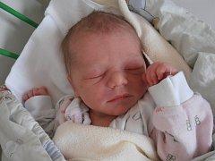 Adéla Štojdlová přišla na svět v českobudějovické porodnici ve středu 9. 9. 2015 ve 3 hodiny a 20 minut. Po narození vážila 2,90 kg a doma v Trhových Svinech už se na ni moc těší osmiletá sestřička Nikol.