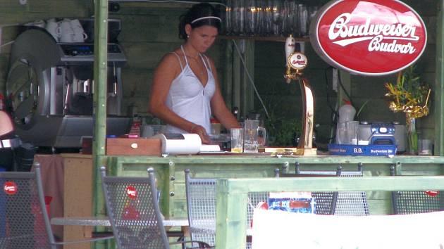 Pracovní příležitosti studentům dávají také restaurace, které si na letní měsíce pořizují terásky. Ve středu jsme zastilhli jednu z brigádnic na českobudějovickém náměstí Přemysla Otakara II.