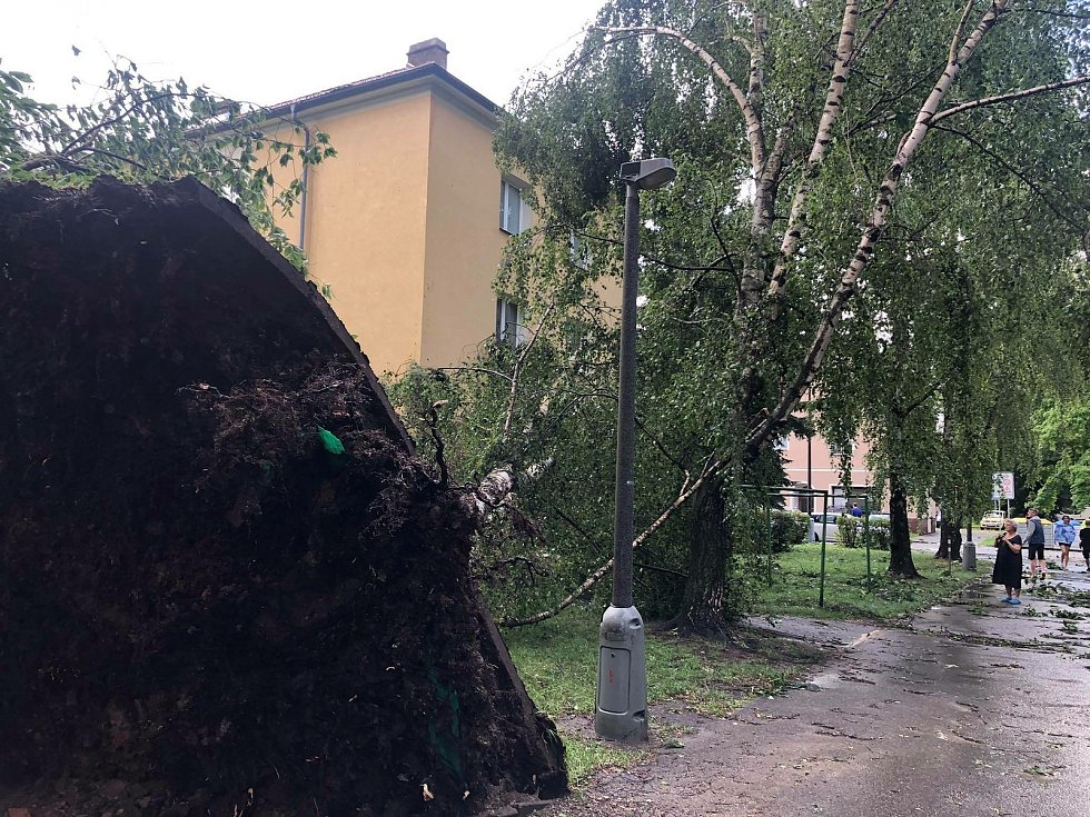 Následky bouřky v Českých Budějovicích na Pražském předměstí.