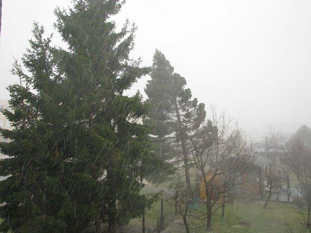 Orkán Emma nejen v Českých Budějovicích pořádně zamával s několika desítkami stromů.