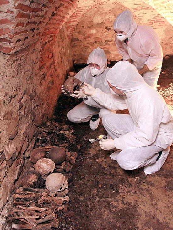 Vědci z Akademie věd ČR včera sbírali vzorky v hrobkách pod katedrálou v Českých Budějovicích. Její rekonstrukce potrvá až do roku 2013.