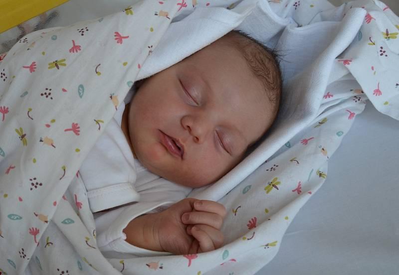 Nela Vlnatá z Dolních Novosedel. Prvorozená dcera Moniky Brůhové a Michala Vlnatého se narodila 8. 6. 2021 ve 2.41 h. Váha po porodu ukazovala 3,85 kg.
