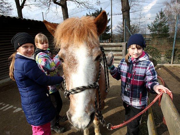 Mezi zvířaty trávily děti jarní prázdniny na příměstském táboře hlubocké zoo.