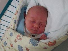 Tereza Bahnerová a Lukáš Pešek se stali pyšnými rodiči Dominika Peška. Ten se narodil v pondělí 15. 11. 2016 ve 14.43 h. Chlapec s porodní váhou 3,82 kg bude vyrůstat v Třeboni po boku o tři roky staršího brášky Tobiáše.
