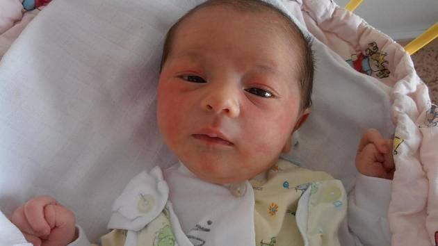 3,75 kg – to byla váha, kterou se po narození pyšnila holčička jménem Sofia Szenci. Poprvé spatřila svět v pondělí 4.3.2013 v 18 hodin a 35 minut. Domovem jí budou Nové Homole.