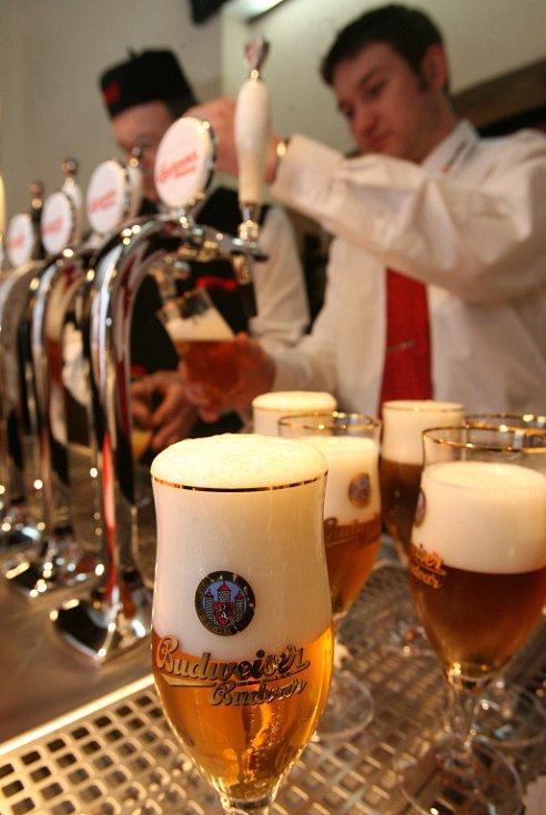 Masné krámy budou úspěšné podle toho, kolik do nich bude chodit lidí. Kolik piv se tu denně natočí a vypije?