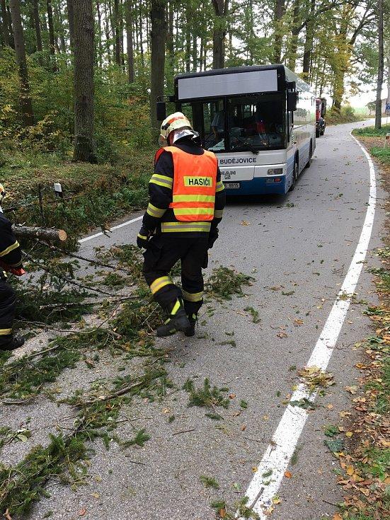 U Kostelce směrem na Poněšice likvidovali dobrovolní hasiči z Hluboké nad Vltavou padlý strom.