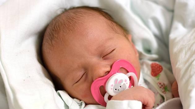 V krajském městě je doma novorozená Elen Perecárová. Rodičům Lucii a Michalu Perecárovým se narodila 29. 10. 2019 v 9.47 h. Její porodní váha byla 3,29 kg.