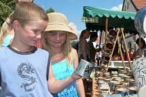 Proslulou akcí jsou v Holašovicích selské slavnosti. Dovednost řemeslníků a jejich výrobky obdivují i nejmladší návštěvníci vesnice, zapsané do seznamu UNESCO.