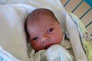 V Plavu vyroste Jan Šustr, kterého maminka Alena Šustrová přivedla na svět v českobudějovické nemocnici 23. 8. 2017 v 10.34 h. Novorozenec, který je zatím jedináčkem, vážil 3,4 kilogramu.