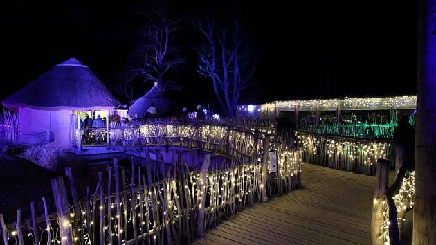 Žárovičky, světla a 3D efekty se postarají o vánoční atmosféru v hlubocké zoo, kam se můžete přijít na zvířata podívat i o něco déle než běžně.