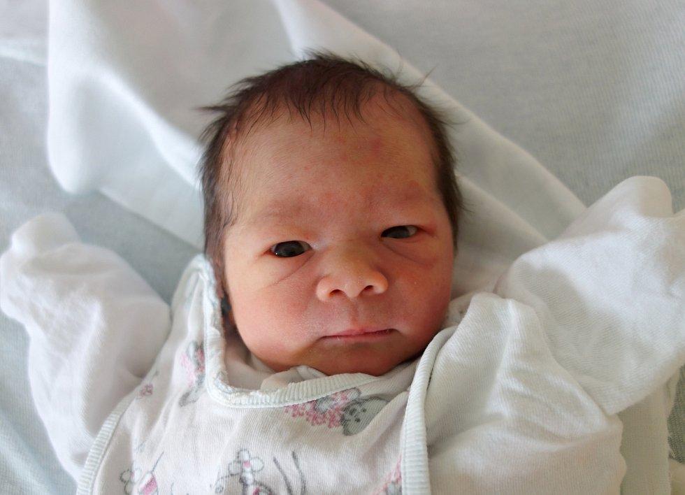 Do Prahy si svého prvorozeného potomka, Sophii Le Bigre, odvezou rodiče. Holčička přišla na svět v budějovické porodnici v úterý 4. 4. 2017 v 8.07, vážila 2,58 kg.