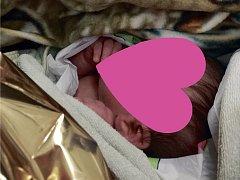 Ivanka. Novorozené děvčátko si v noci na středu užilo pozornost záchranářů, nyní si hoví v péči nemocničního personálu.