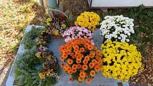 Hřbitovy na jihu Čech už lidé zdobí novými dekoracemi, květinářství přijímají objednávky, obchody prodávají hotové výrobky.