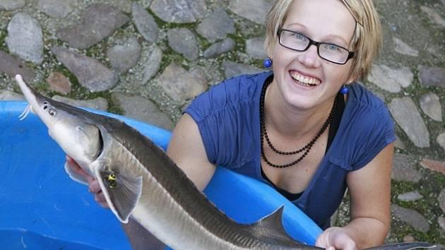 Studentka Fakulty rybářství a ochrany vod s jeseterem.