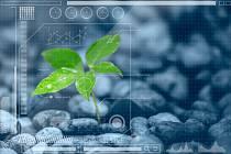 Mezinárodní konference biologů zaměřená na rostliny se koná v závěru srpna v Českých Budějovicích.