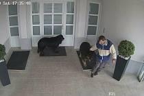 Policisté pátrají po muži ze záznamu kamery.