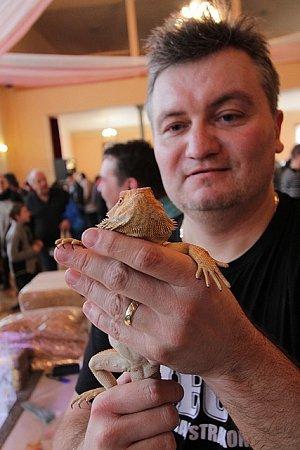 První letošní terarijní výstava a burza se uskutečnila vneděli vBudějovicích. Přilákala stovky lidí. Velkou pozornost budili hadi, agamy, chameleoni a další zvířata.